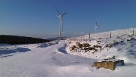 Christmas Cracker as Ireland's Wind Energy Fuels Festive Record